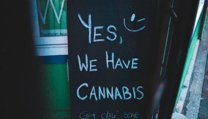 Marijuana fascinates