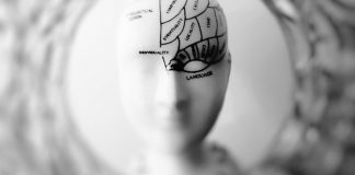CBD's Effectiveness in Treating Neurological Disorders