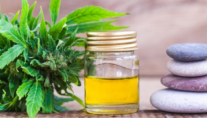 CBD Oil Can Help In Anxiety