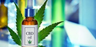 CBD Oil Before You Use It