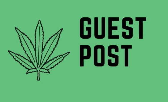 submit-a-guest-post-on-cbd-marijuana-blog