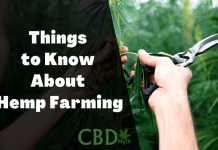 Things to Know About Hemp Farming