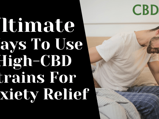 Ultimate Ways To Use High-CBD Strains For Anxiety Relief