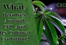 CBD culture